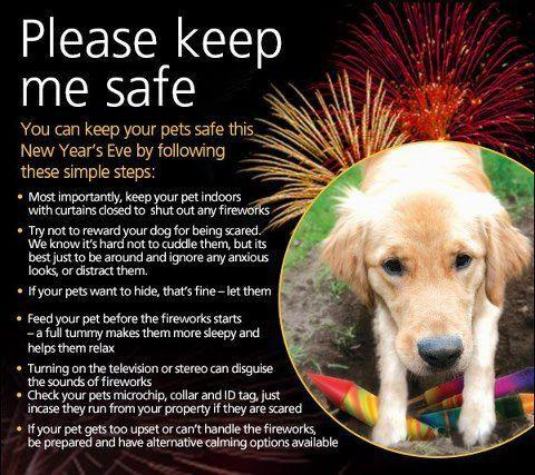 New-Years-Pet-Safety